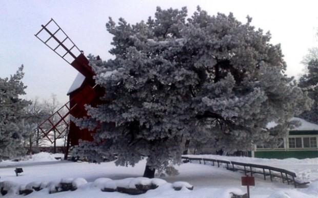 Estocolmo-7-630x393